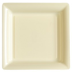 Plate square ivory 29x29 cm disposable plastic - the 12