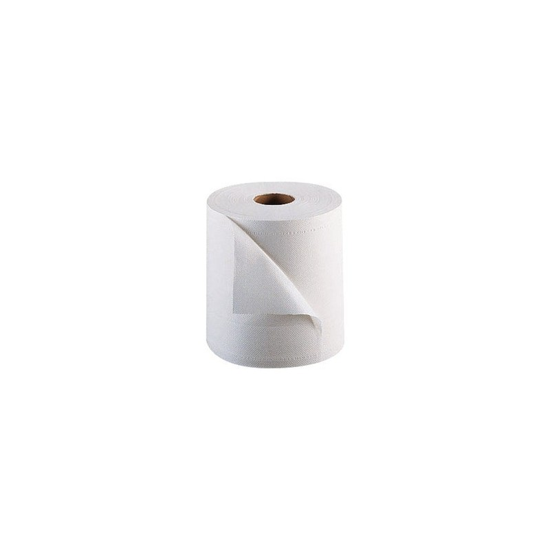 Hand Towels Format Garage 1000 sheets in 2 ply pre-cut 300 mx 22 cm - the reel