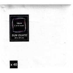 WHITE TOWEL in disposable paper 38 x 38 cm Sun Ouate plain - the bag of 40