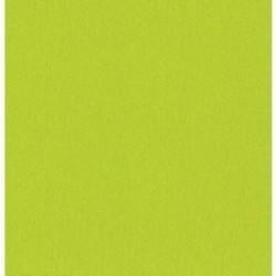 SERVIETTE VERT ANIS en papier jetable 38 x 38 cm Sun Ouate unie - le sachet de 40