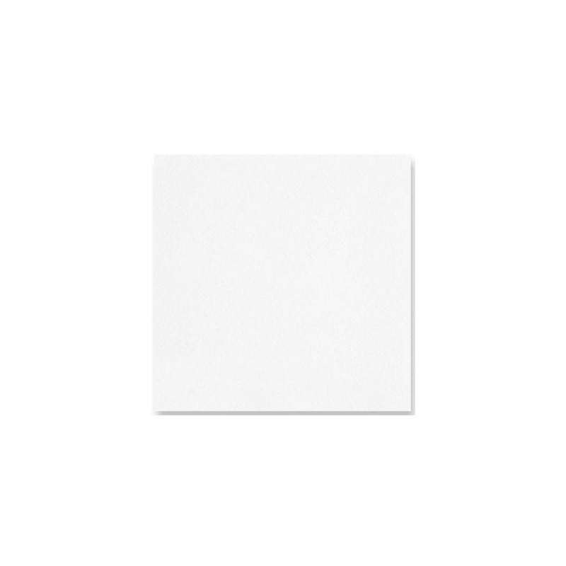 WHITE TOWEL in disposable paper 40 x 40 cm non-woven - the bag of 50