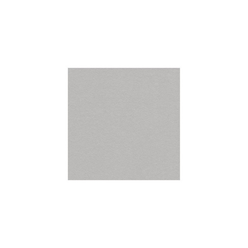 GRAY SILVER TOWEL in disposable paper 40 x 40 cm non-woven - the bag of 50