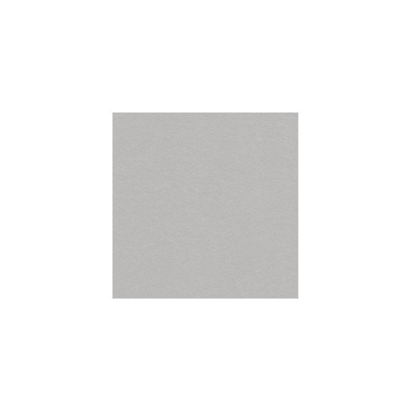 SERVIETTE GRIS ARGENT en papier jetable 40 x 40 cm non-tissé - le sachet de 50