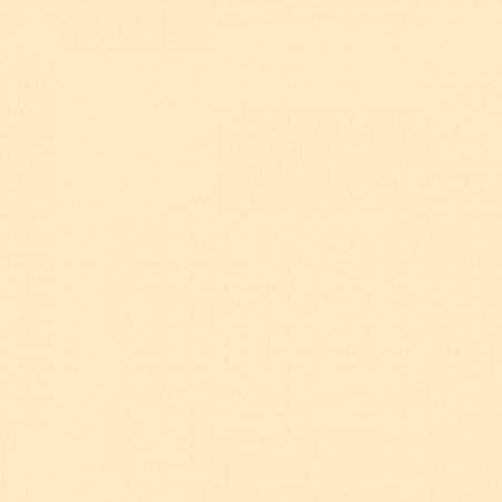 TOALLA DE MARFIL en papel desechable 40 x 40 cm no tejido - la bolsa de 50