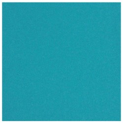 TURQUOISE TOWEL in disposable paper 40 x 40 cm non-woven - the bag of 50