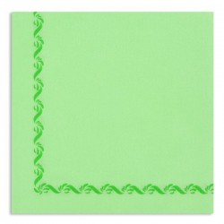 ANIS GREEN TOWEL with disposable paper pad Sun Ouate 38x38 - the bag of 50