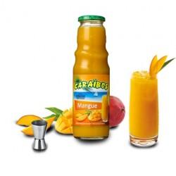 Nectar Caraibos MANGUE 1 L