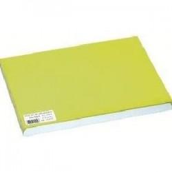 Juego de mesa desechable de papel desechable verde 30x40 cm - el 1000