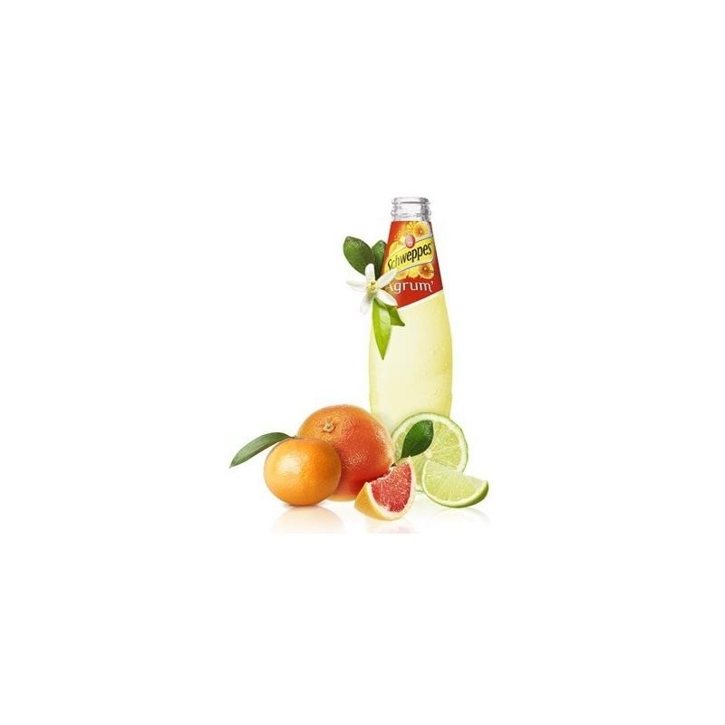 SCHWEPPES Agrum 24 bottiglie da 25 cl in vetro a rendere (deposito di 5,50 € incluso nel prezzo)