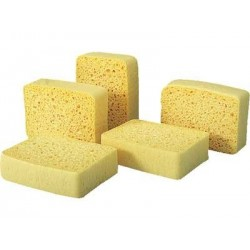 Vegetable SPONGE Spontex N ° 4 14.4 cm x 10.1 cm x 0.28 cm - the 10