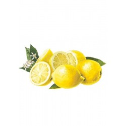 Sirop de Citron Pulpes Sans sucre Bigallet 1 L