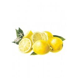 Sirup Zitronenpulpe Ohne Zucker Bigallet 1 L