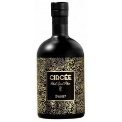 RUM spiced Circée Bigallet 40 ° 70 cl