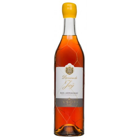 ARMAGNAC Domaine de Joy VSOP 40.5 ° with case 70 cl