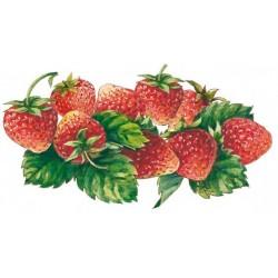 Jarabe de fresa con sabor a fruta Bigallet 1 L
