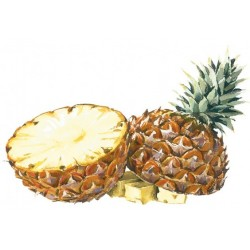 Pineapple SYRUP Bigallet 1 L
