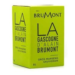 Domaine Brumont GASCOGNE Trockener Weißwein Gros Manseng - Sauvignon IGP-Brunnen à nin BIB 5 L