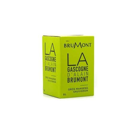 Domaine Brumont GASCOGNE Vin Blanc Sec Gros Manseng - Sauvignon IGP Fontaine à nin BIB 5 L