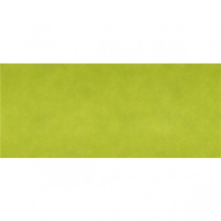 Runner da tavola in tessuto non tessuto Spunbond VERDE ANICE 40 x 120 cm 1/2 piegato - il 40
